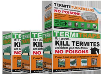 Termite Trap 3:1 Kit