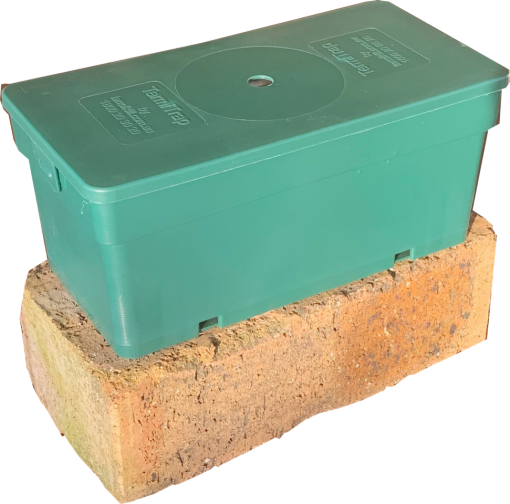 Flesh-colored house brick with the green-colored plasctic box which is called TermiTrap by Termikill Australia.