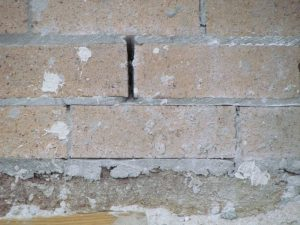 "Closed-up of brick wall with a ledge in the middle, from the blog ""termite pictures""."