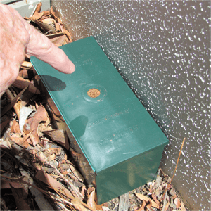 A green termite trap plastic box placed beside a wall, which is part of the traps and treatments.