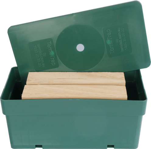 Closed-up of a termite trap along with the timbers placed inside a green box.