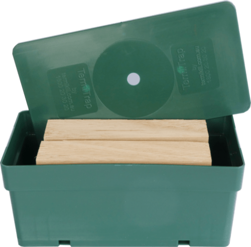 Closed-up of a termite trap with 2 timbers inside a green box.