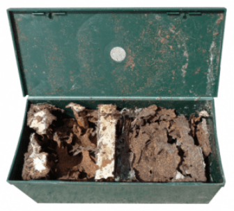 Green termite trap box widely-opened after a successful treatment.