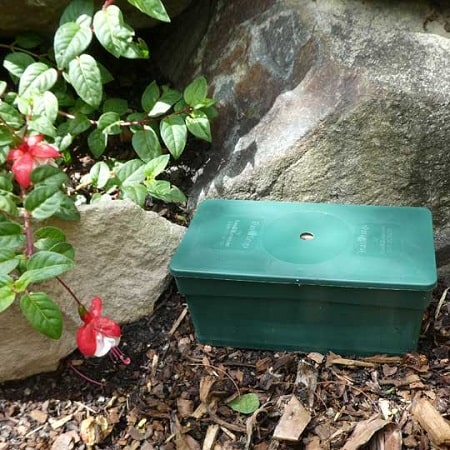 A green plastic box of a termite trap placed on a garden.